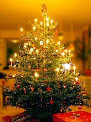 Gondolatok a karácsonyfáról